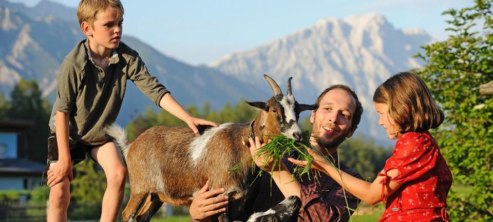 Landhotel Stern Tierfreundlich