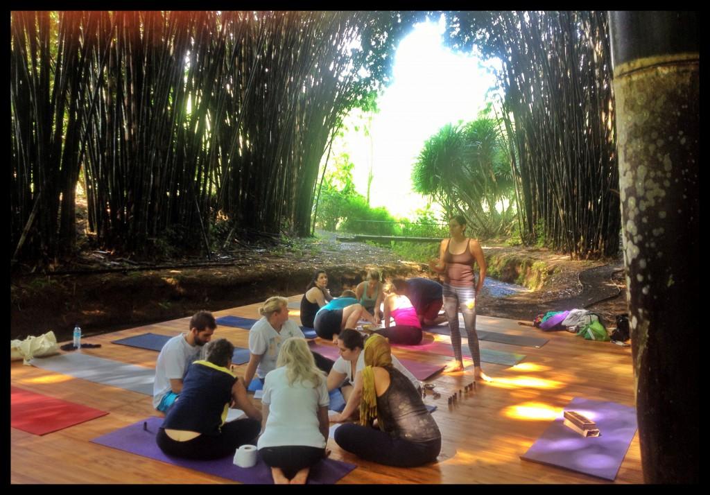 Yoga under Bamboo