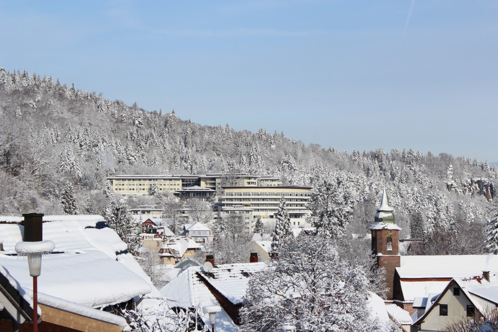 Schwarzwald Panorama Winter