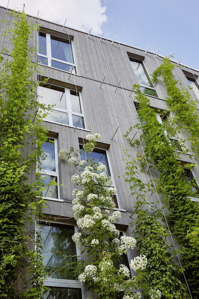 GreenCityHotel,Frbg.514_small