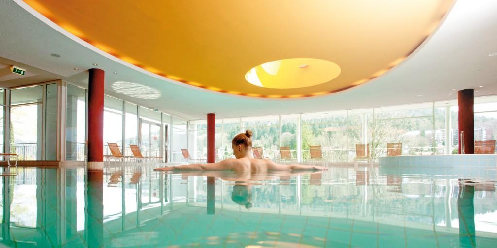 Pool Schwarzwald Panorama