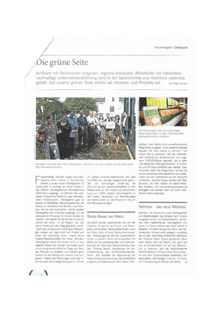 thumbnail of die_grne_seite2_1