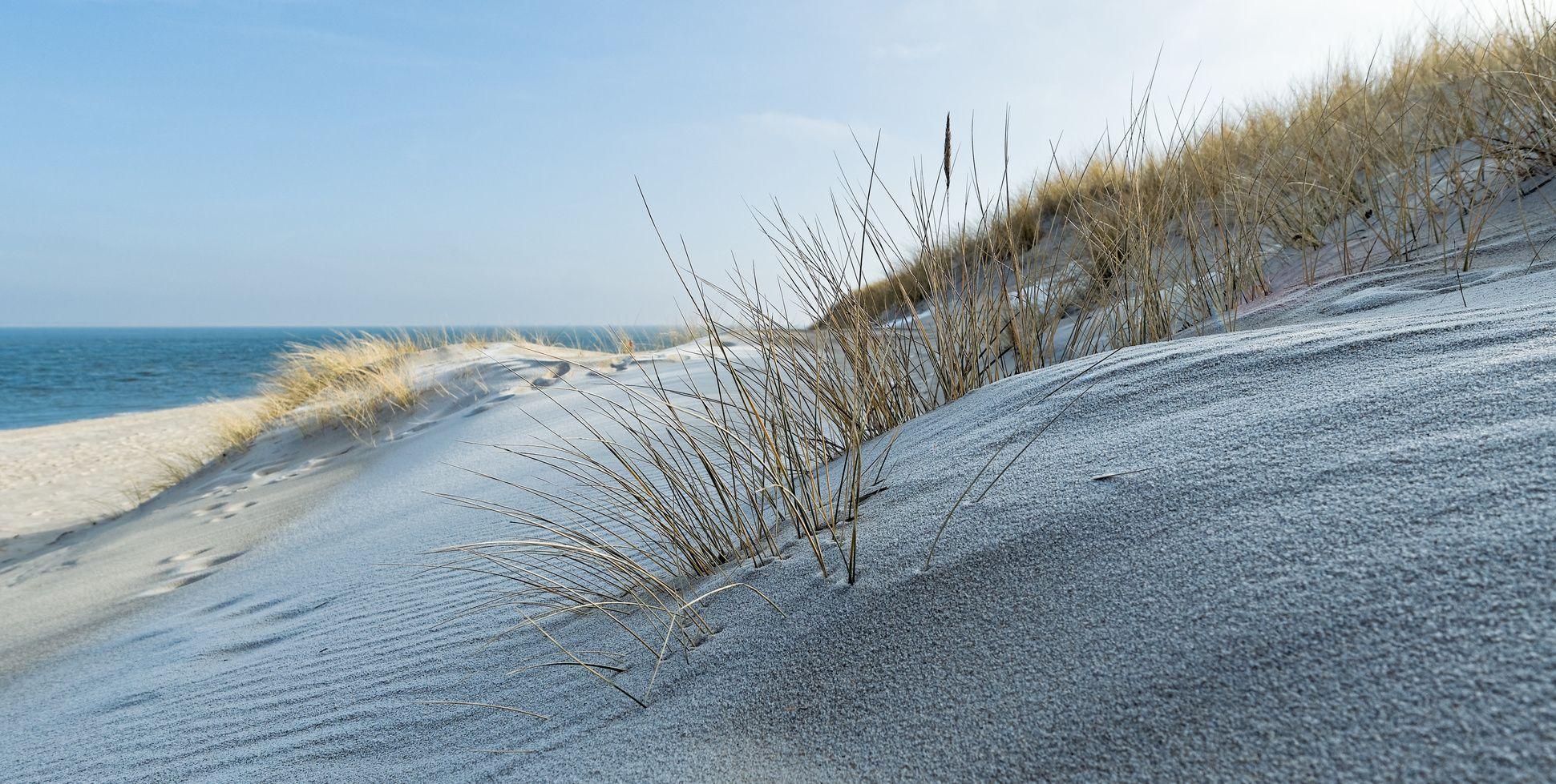 Juist Eine Insel Im Winter Green Pearls Die Zukunft