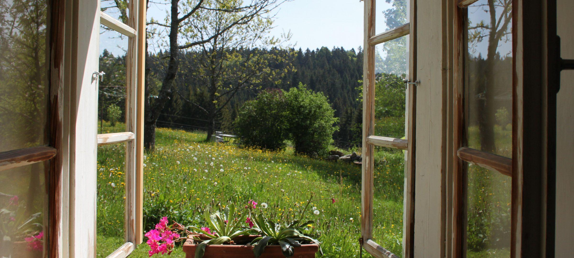 Haidl Madl Ferienhaus Fenster Aussicht