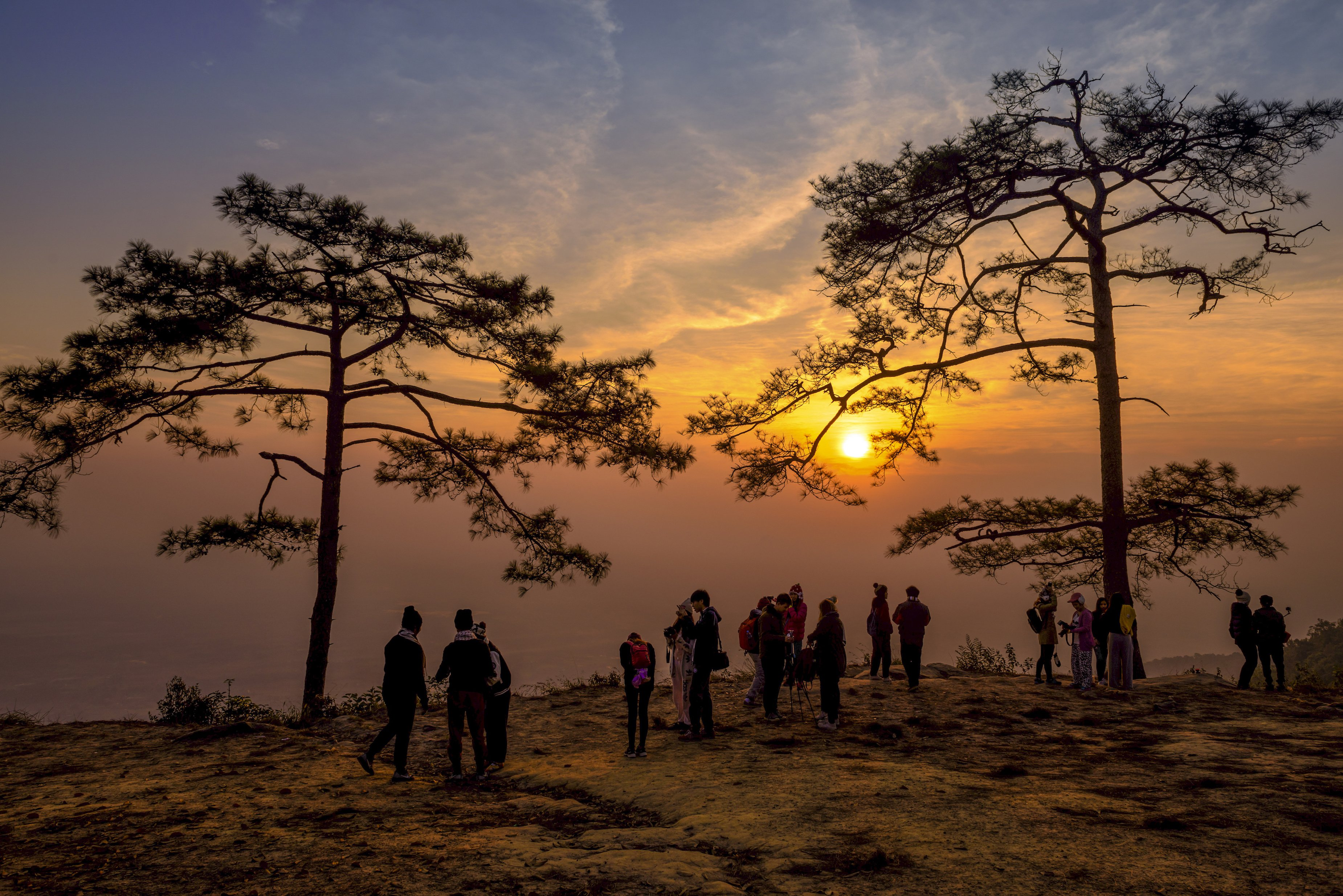 Highlight: Watch the sunrise on the Nok Aen cliff at the Phu Kradung national park in Loei © TAT
