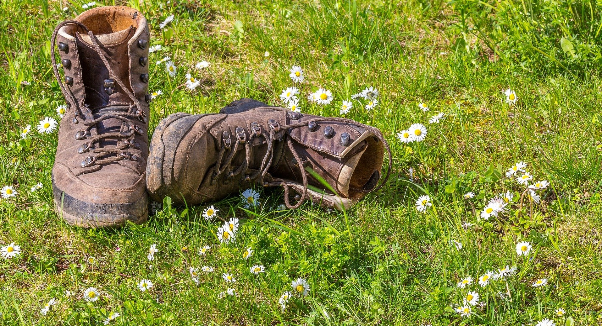 Hiking boots on a meadow