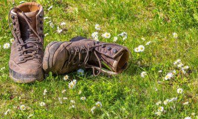 Wanderschuhe auf Blumenwiese