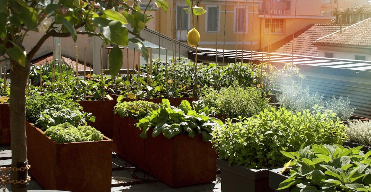 Hotel Milano Scala – Garden