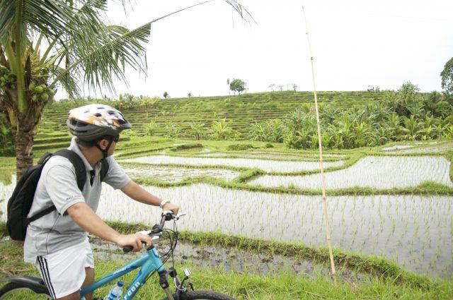 Eco-tours ethically organized by Puri Dajuma Cottages and Spa