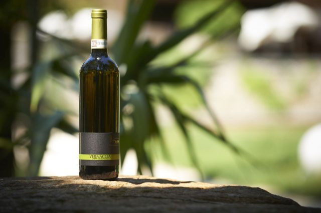 Organic, vegan wine from Tuscany. © i pini