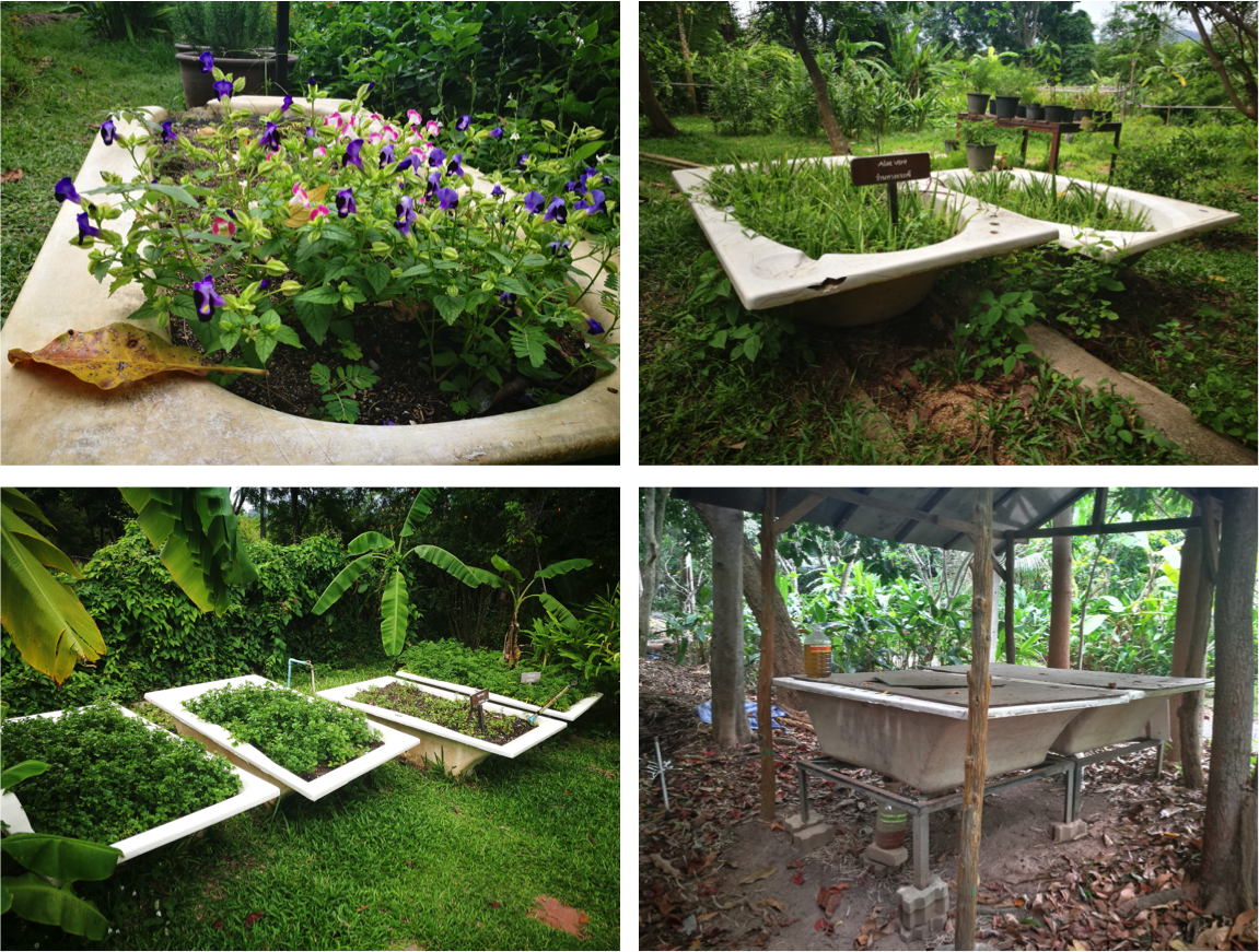Upcycling at Tongsai Bay: old bath tubs in organic garden