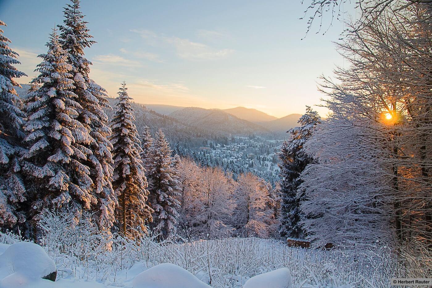 Rotensoler Steige Bad Herrenalb © Herbert Rauter